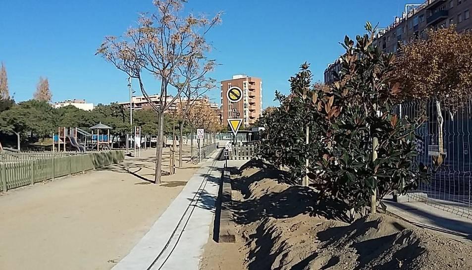 Imatge dels arbres plantats al parc del Ferrocarril de Reus