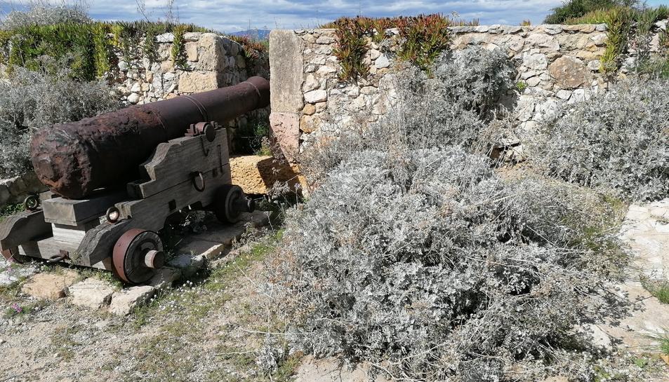 Les herbes envolten els canons localitzats en diferents espais del Passeig Arqueològic.