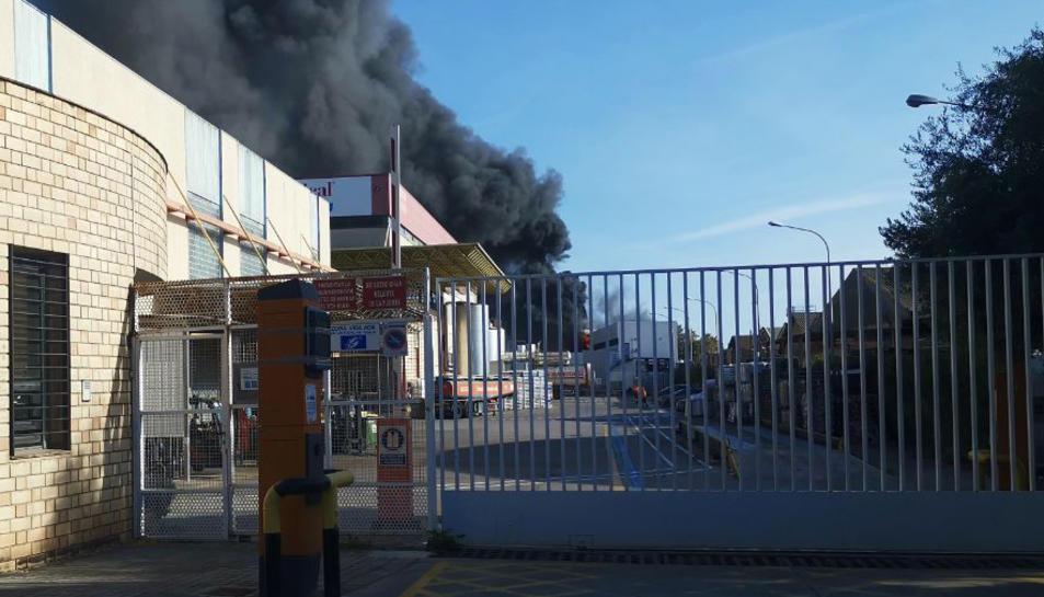Una quinzena de dotacions han treballat des de primera hora de la tarda per extingir el foc