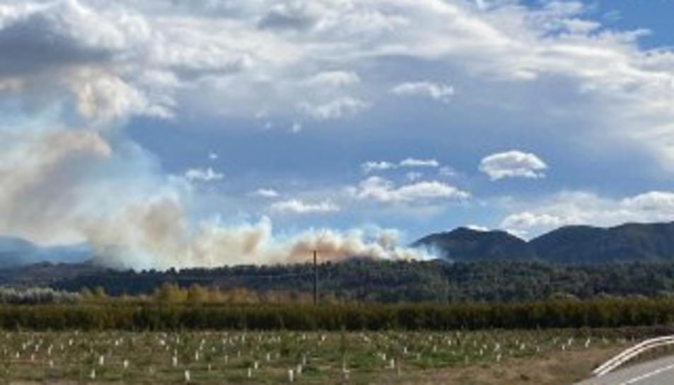 Imatge del fum originat per l'incendi a Tivissa.