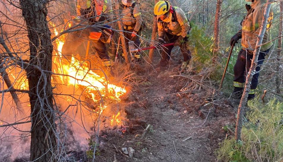 Alguns Bombers treballant en l'extinció de l'incendi forestal de Tivissa.