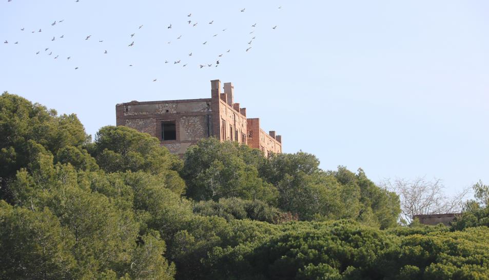 Imatge de l'edifici que va albergar el preventori de la Savinosa.
