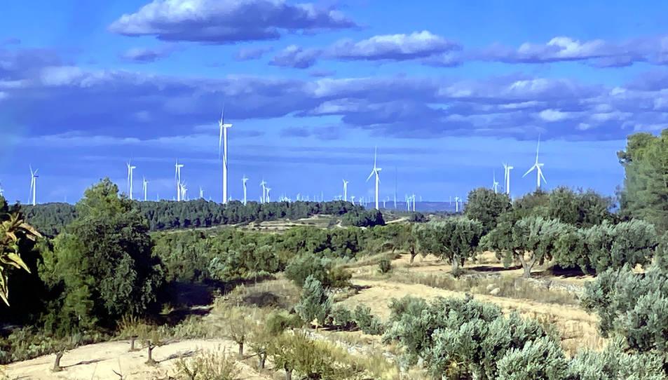 Plana alta de la Terra Alta coberta d'aerogeneradors darrere de camps d'oliveres i ametllers de la zona dels Pesells d'Horta de Sant Joan.