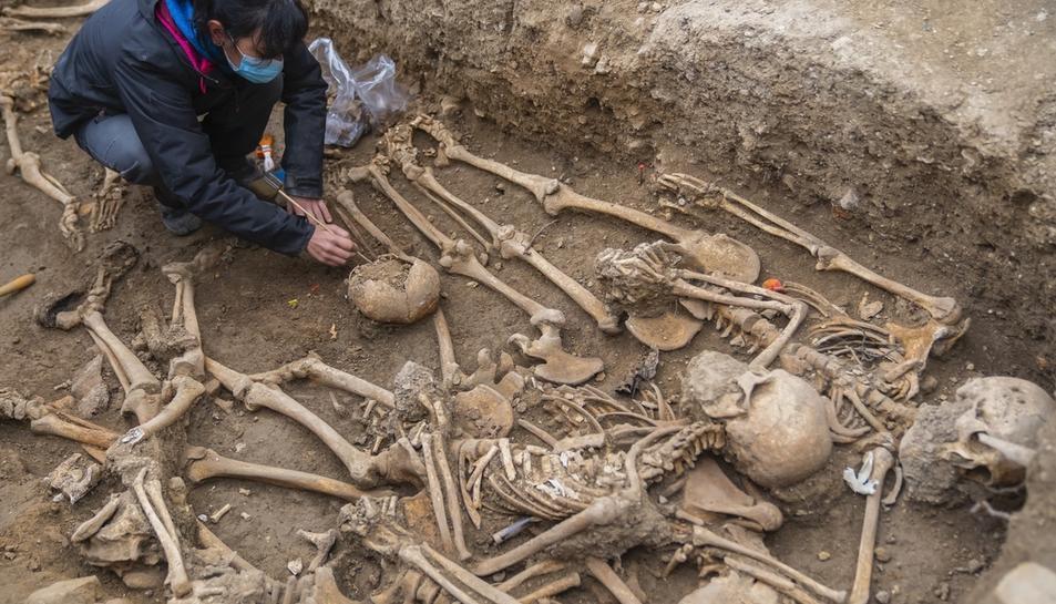 Imatge de les restes trobades.