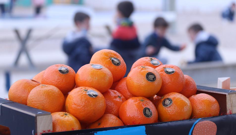 Detall d'una caixa de clementines amb nens jugant al fons al pati de l'escola