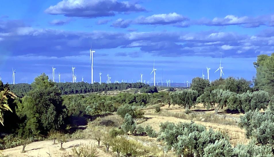 La plana alta de la Terra Alta coberta d'aerogeneradors darrere de camps d'oliveres i ametllers de la zona dels Pesells d'Horta de Sant Joan.