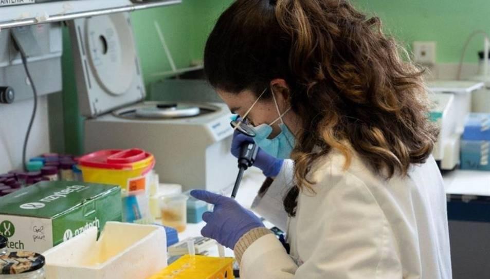 Una investigadora al laboratori del CNBA-CSIC.