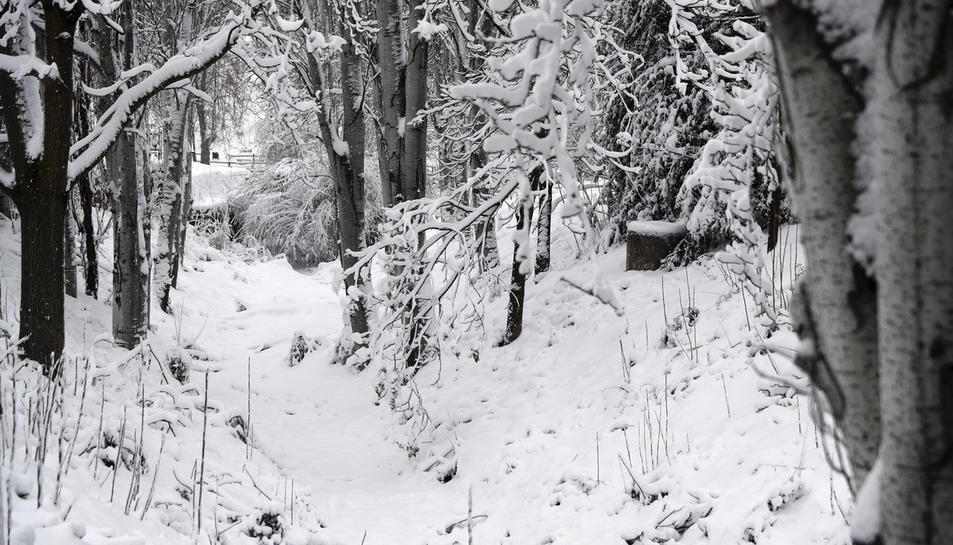 La nevada por todo el país