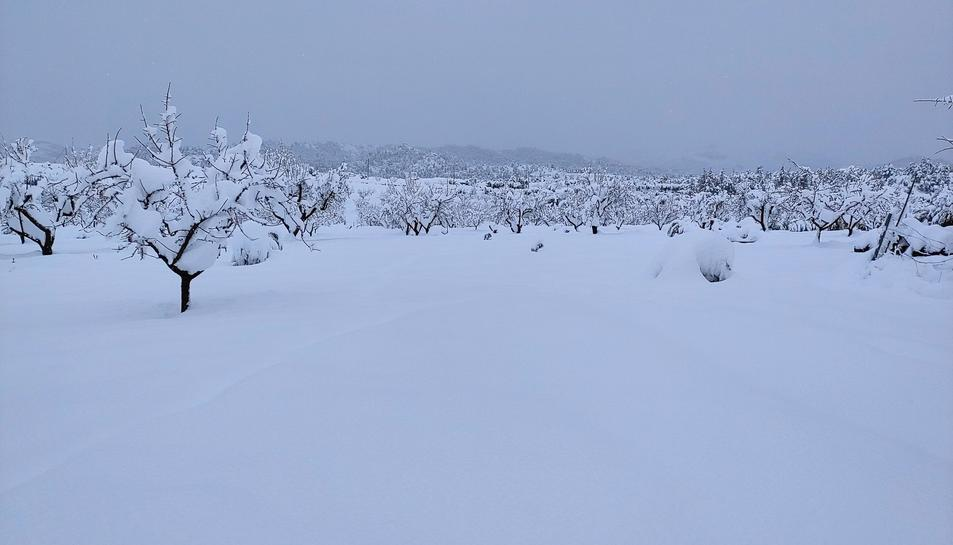 Imatge del terme d'Arnes, a la Terra Alta, amb gruixos de neu de 60 cm.