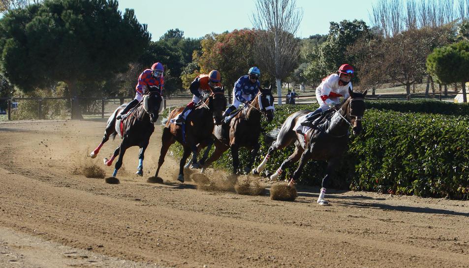 Un dels instants d'una de les tres curses que es van disputar ahir al matí al Parc Torre d'en Dolça.