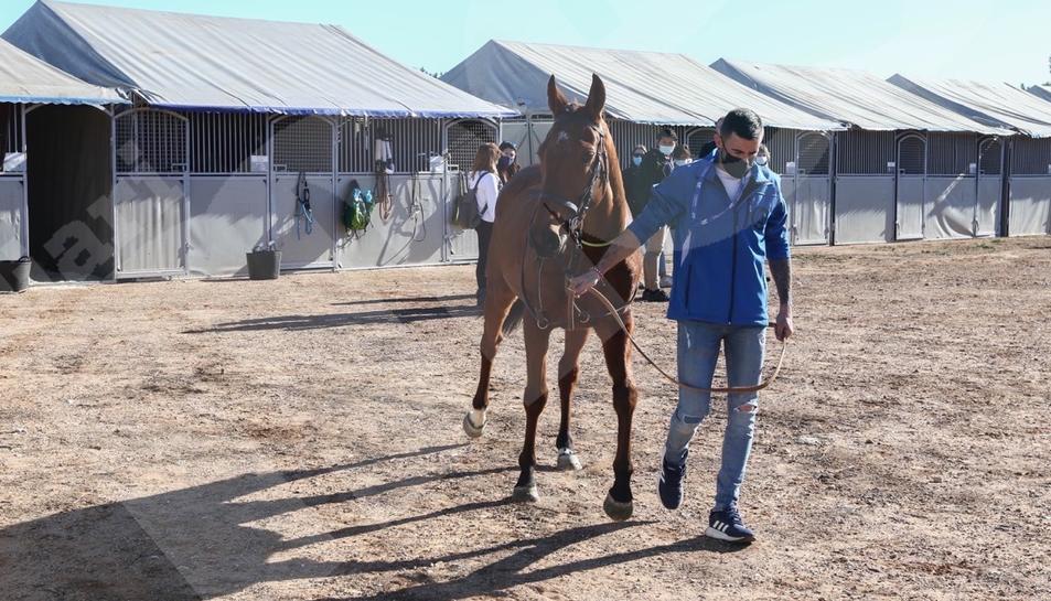 Carreras de caballo del Cós de Sant Antoni de Vila-seca