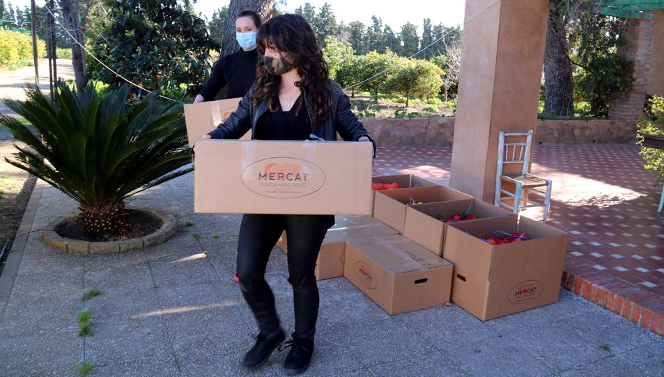 Míriam López de TransProCat i la Rosa Samper de Mercat Finca Mas Roig recollint a la finca les comandes de cítrics que transportaran als clients.