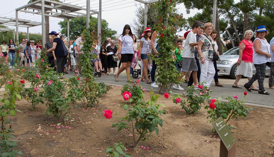 Una imatge d'arxiu de l'edició 2019 de la Festa de les Flors.