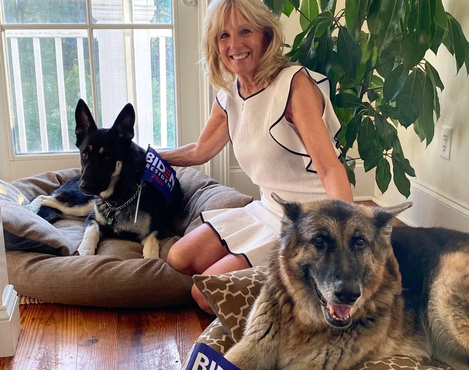 L'esposa del president dels Estats Units, Jill Biden, amb els dos gossos.