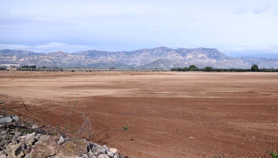 Pla general dels terrenys on es projecta la planta de compostatge al terme municipal de Santa Bàrbara.