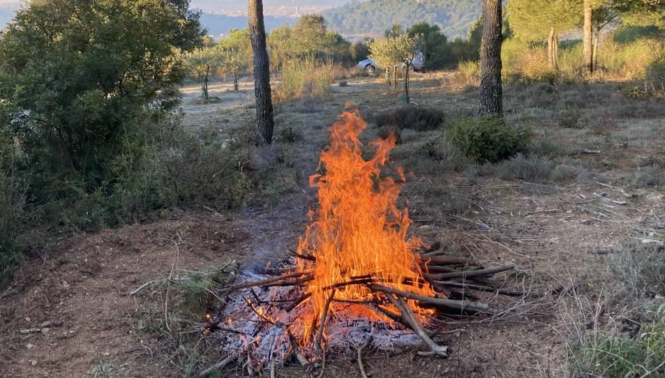 Una crema de restes forestals a les Gavarres, aquest hivern.