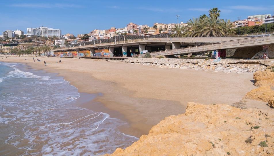 platja, gossos, Tarragona, platja del Miracle, sorra, Setmana Santa, animals