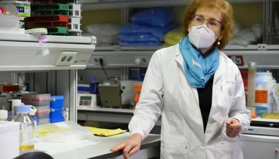La viròloga Margarita del Val.