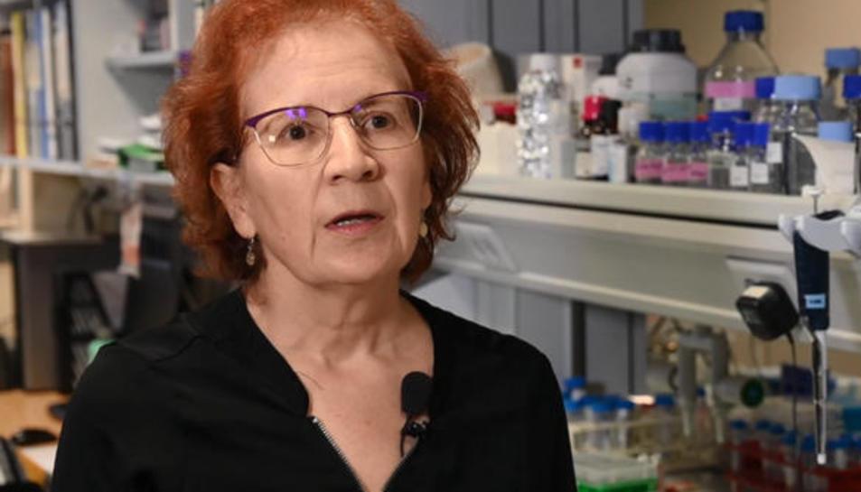 La viròloga, Margarita del Val, investigadors del CSIC.