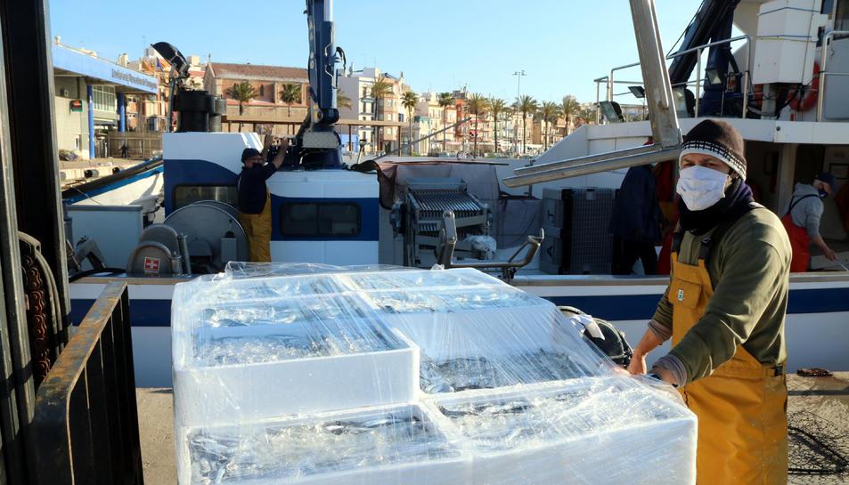 Un mariner davant una pila de caixes de seitó embalades, un cop descarregades al moll, al barri del Serrallo de Tarragona.