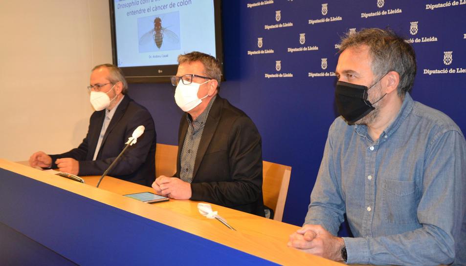 L'investigador de l'IRBLleida, Andreu Casali, amb el president de la Diputació de Lleida, Joan Talarn, i el diputat de Salut Pública, Albert Bajona, durant la presentació de la recerca a la diputació lleidatana.