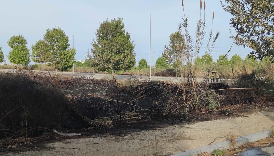 La zona de matolls afectada per l'incendi.