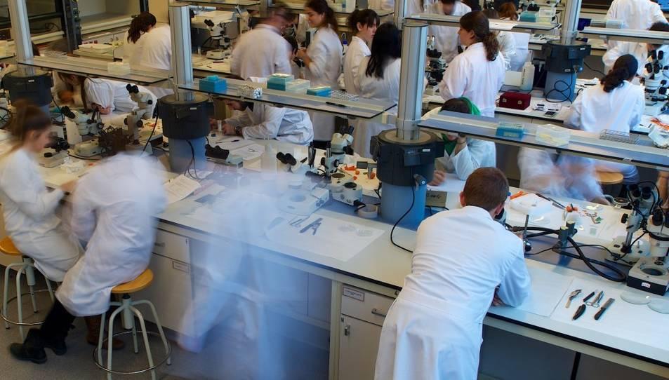 L'estudi, publicat en obert a la revista Plos Biology, es basa en les dades de citacions recollides a Scopus.