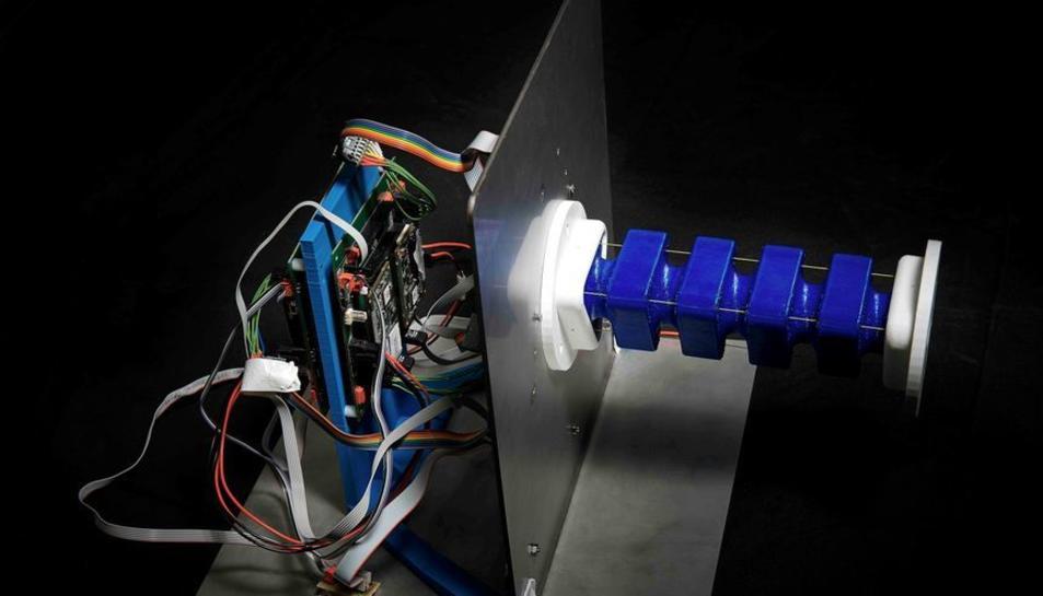 'Robòtica tova', solucionar problemes emulant a la naturalesa