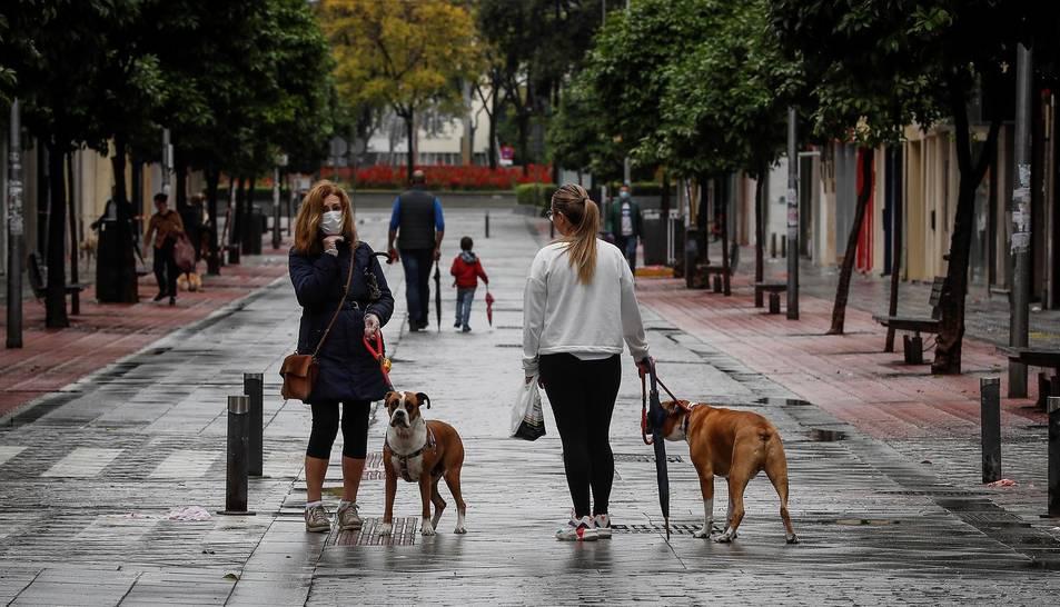 Dos noies passejant el seus gossos.