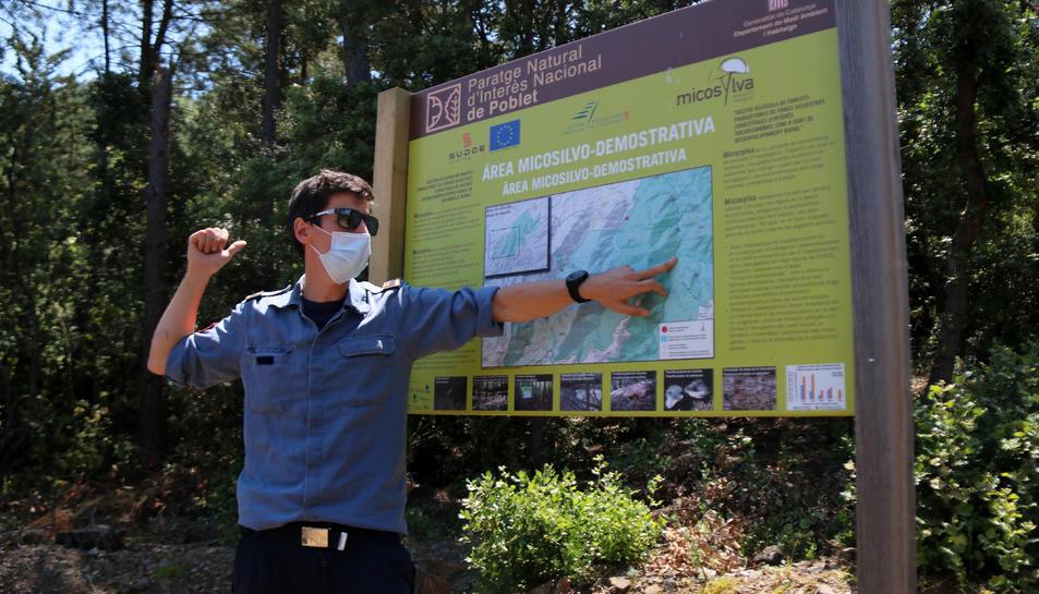 Pla obert del sotsinspector de la unitat GRAF de la regió de Tarragona, Jordi Castellví.