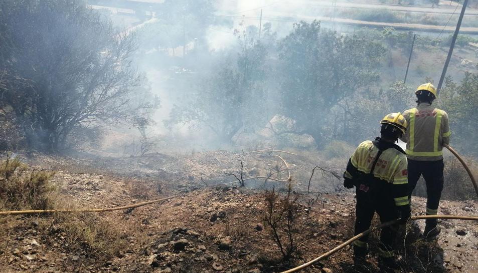 Cremen uns 2100 metres quadrats de matolls a l'Horta del Pimpí