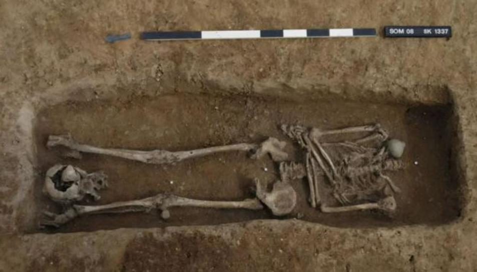 Un dels esquelets trobats.