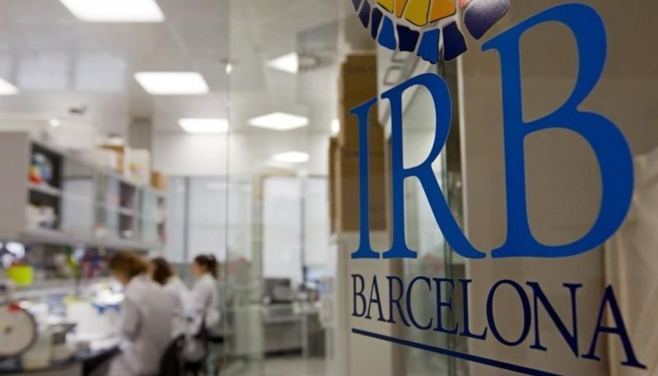 Imatge d'arxiu d'un laboratori de l'IRB de Barcelona.