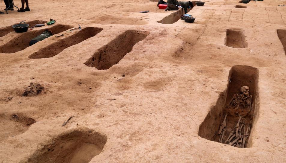 Diverses fosses obertes de la batalla de l'Ebre amb arqueòlegs treballant al Mas de Santa Magdalena, a Móra d'Ebre.