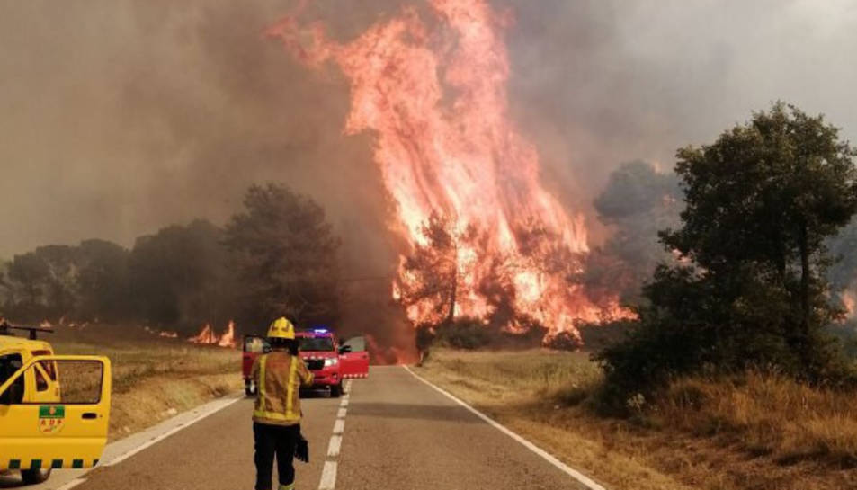 El cap de l'incendi de Santa Coloma de Queralt ha saltat la carretera B-220 i ha agafat massa forestal.