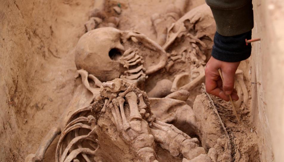 Les restes d'un dels cossos desenterrats d'una fossa de la batalla de l'Ebre al Mas de Santa Magdalena, a Móra d'Ebre.