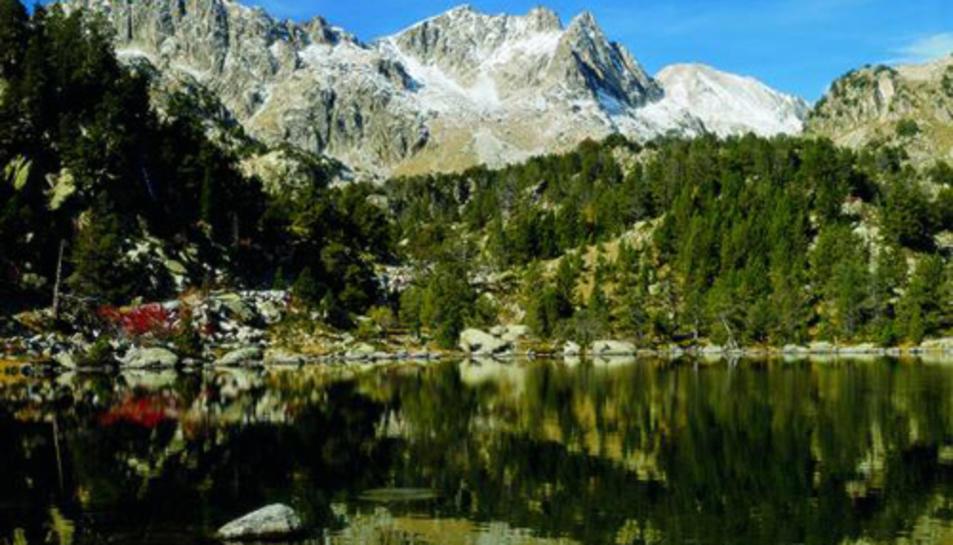 Si augmenta la temperatura la humitat natural als Pirineus no podrà impedir els incendis.