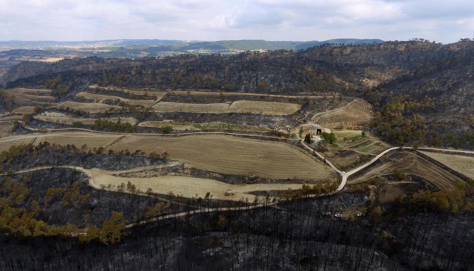 Zones forestals i agrícoles afectades per l'incendi de la Conca de Barberà i l'Anoia