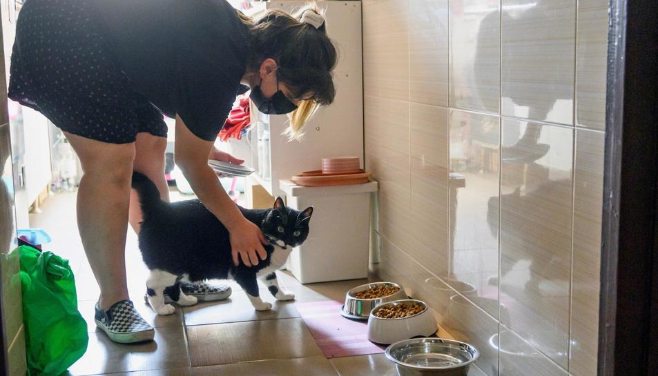 Imatge de Lucia González, cuidadora de gats a la ciutat de Granada.