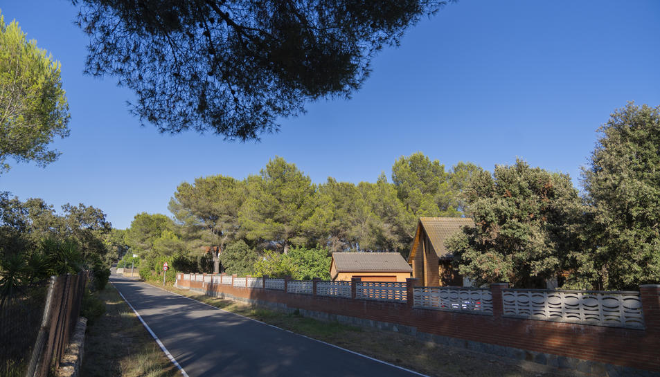 Zona boscosa a tocar de les cases de la urbanització Mas Morató, a Tarragona.