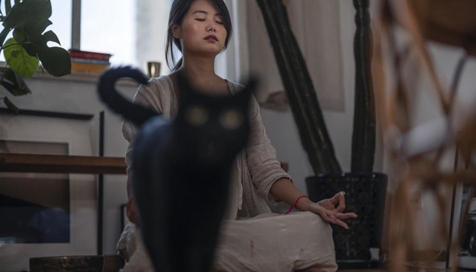 Huang Xinyi