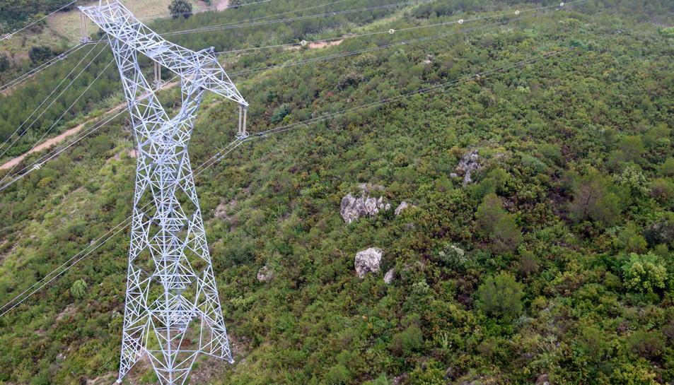Una torre d'una línia d'alta tensió d'Endesa a l'Alt Penedès.