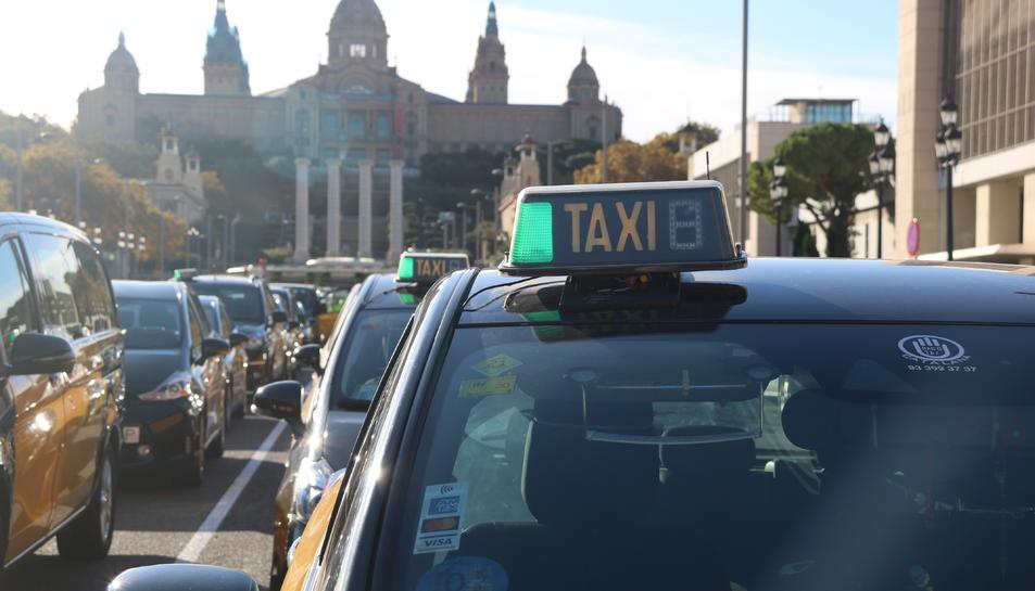 Imatge d'arxiu d'un taxi de Barcelona.