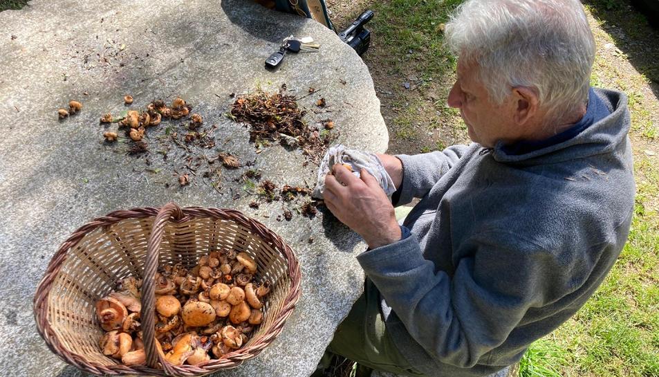 Un home netejant els bolets a Campelles (Ripollès)