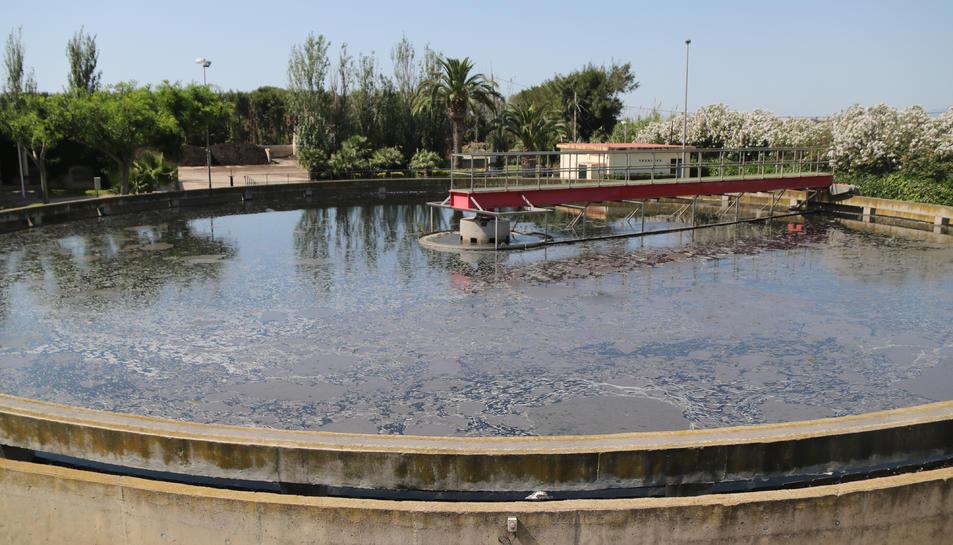 Pla general d'una de les piscines de les instal·lacions d'Aigües de Reus.