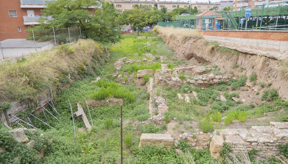 Les males herbes i els matolls envaeixen el solar al final del carrer d'Eivissa, comprès entre Francesc Bastos i Vidal i Barraquer.