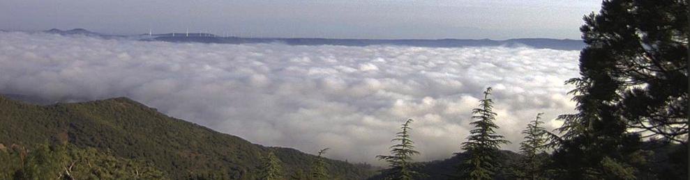 Imatge des de la Casa Forestal de la Pena.