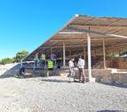 La zona on es faran els treballs d'excavació a la vil·la romana dels Munts, a Altafulla.