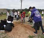 Un grup d'alumnes plantant un arbre.