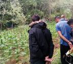 En Vila-rodona, los Mossos detuvieron a dos hombres, responsables de la plantación de marihuana.